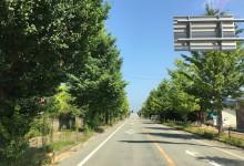 2016.8.6 大熊町/下野上