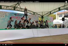 2017 09 30 ふたばワールド/よさこい踊り/Young Bears(大熊町)