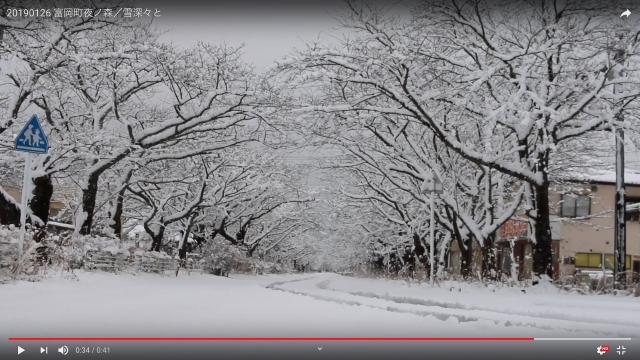 20190126 富岡町夜ノ森/雪深々と